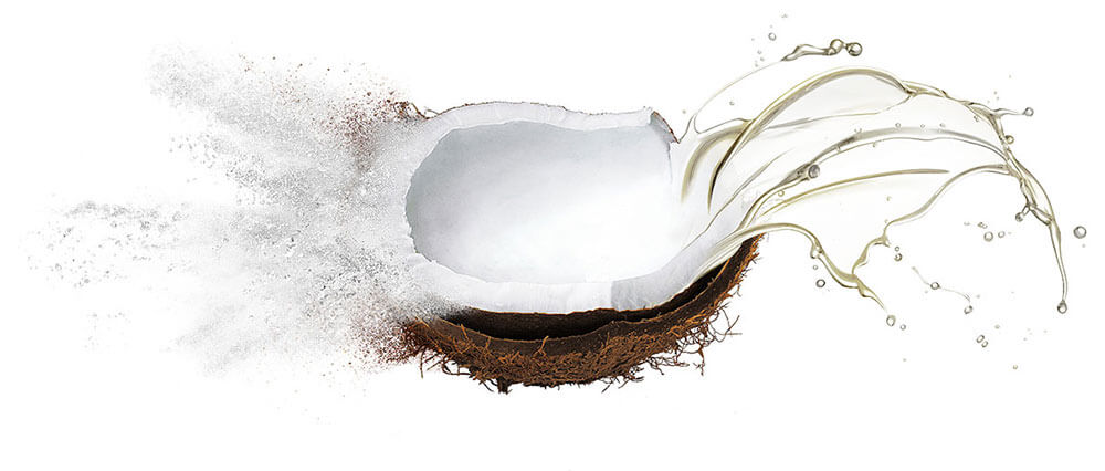 Coconut oil & oil powder wholesale supply & manufacture