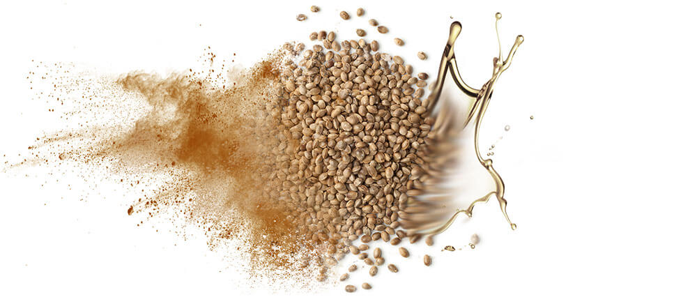 Hemp seed oils & oil powders wholesale manufacturer