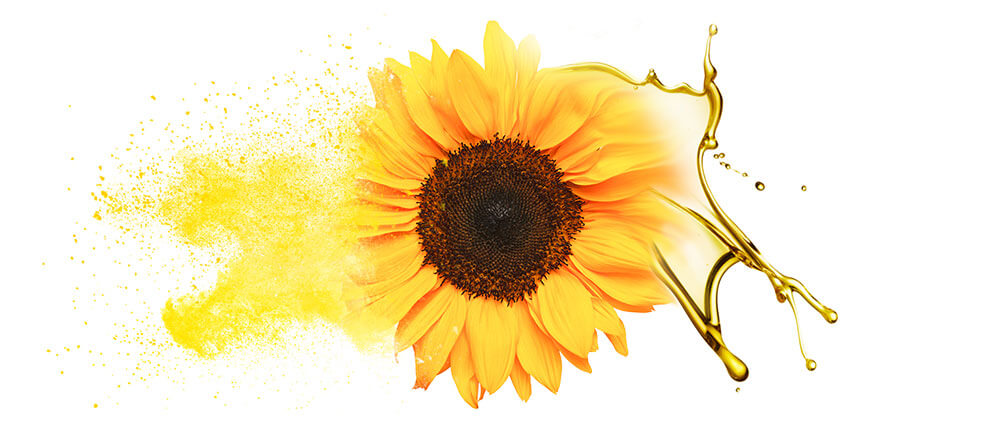 Sunflower seed oils & powders manufacturer