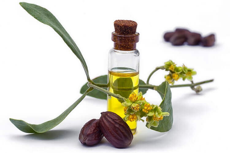 Jojoba oil and oil powder custom formulation bulk manufacturers & distributors