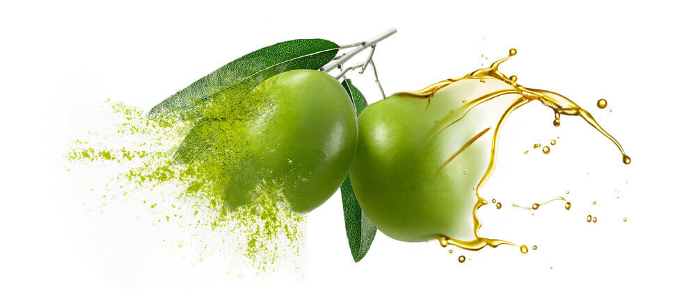Olive oils & oil powders bulk supplier & distributer