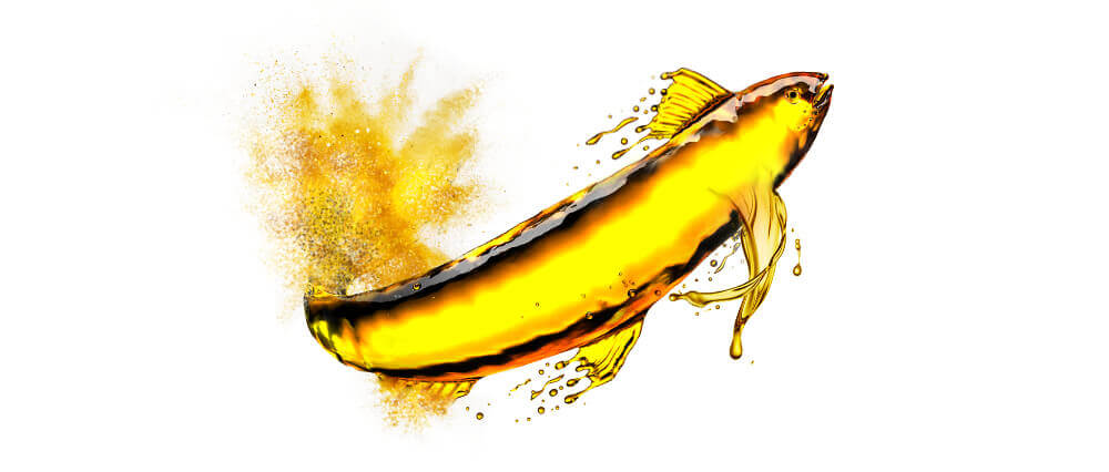 Omega-3 fish oil bulk manufacturer