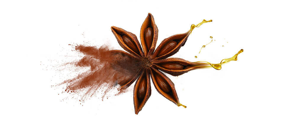 Wholesale anise (aniseed) oils & oil powders
