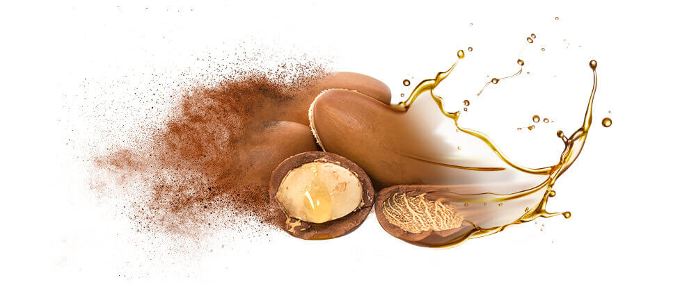 Argan oil and oil powder wholesaler supplier