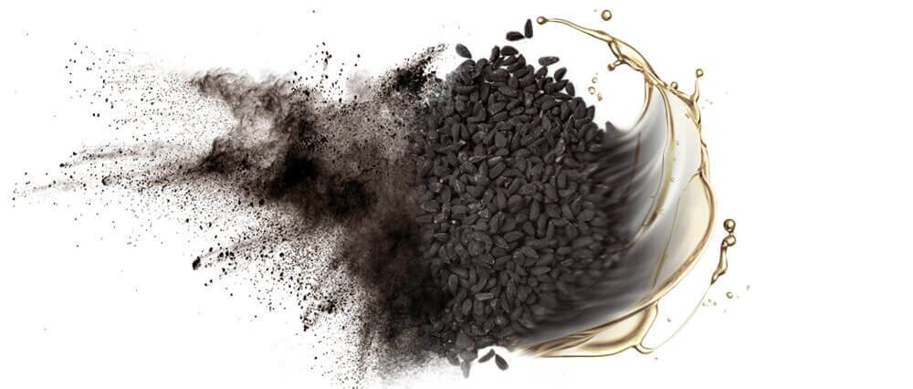 Black cumin seed oil and oil powder wholesaler & distributor bulk supply