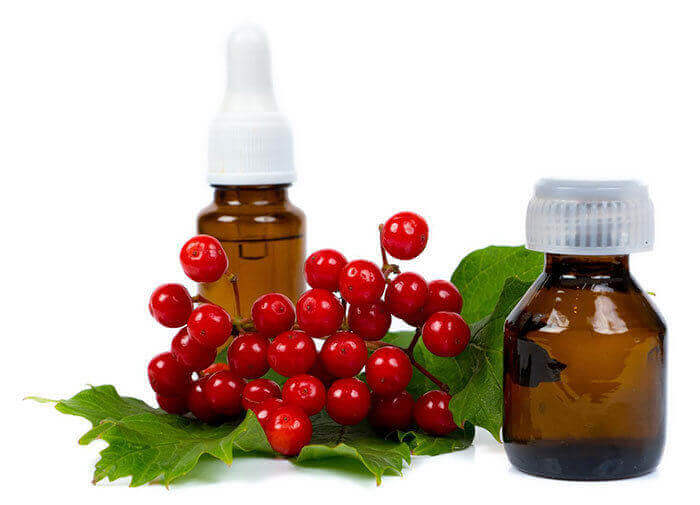 Cranberry seed oil and oil powder products supplier & wholesaler