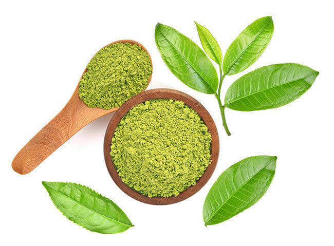 Green tea oils and oil powders bulk supply & manufacture