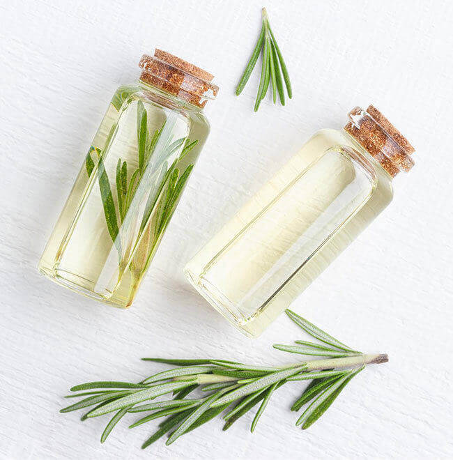 Rosemary oil and oil powder bulk supply & manufacture