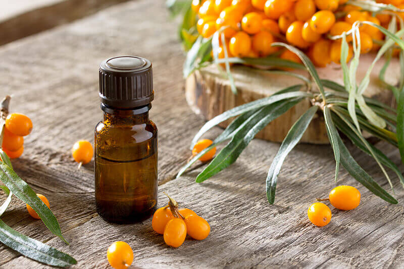 Sea Buckthorn oils & oil powders bulk supply & manufacture
