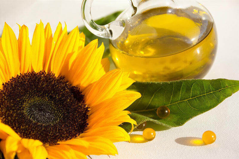 Wholesale sunflower oils and oil powder suppliers