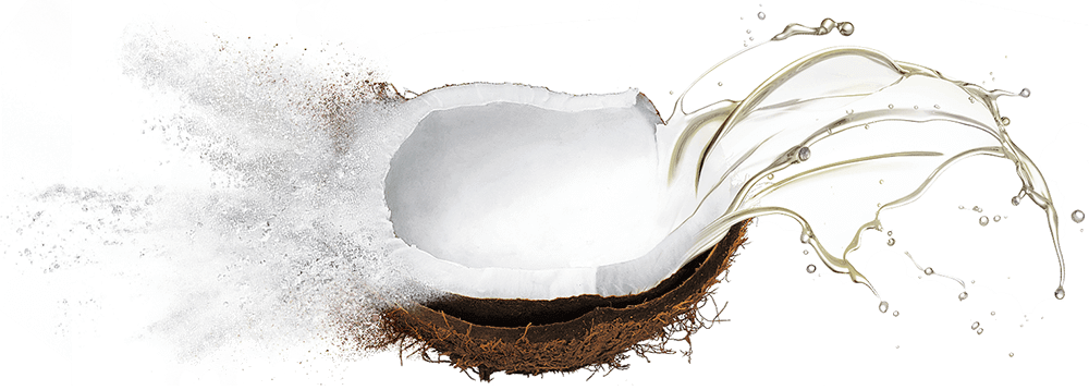 Bulk supply & manufacture of coconut oils & oil powders